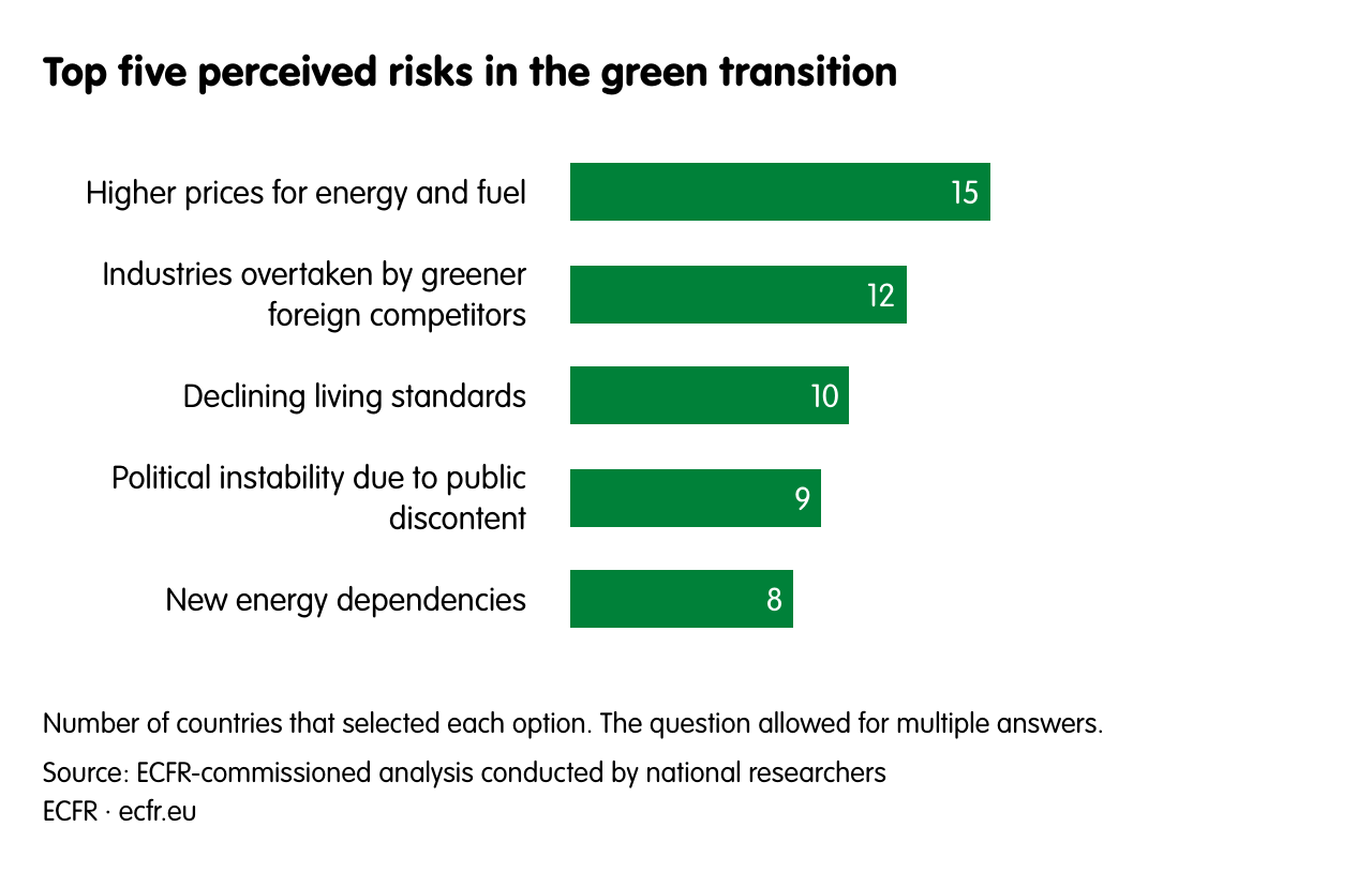 Top five perceived risks in the green transition